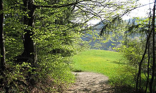 Pilgerwochenende auf dem neuen Baslerweg - Solothurn-Burgdorf