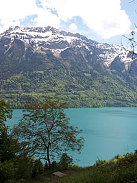Blick auf Brienzersee zwischen Oberried und Interlaken